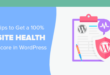 10 Awesome Tips to Achieve a 100% Site Health Score in WordPress