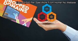 Earn $1,500 Per Sale Work From Home! No Website