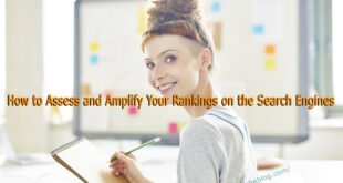 How to Assess and Amplify Your Rankings on the Search Engines